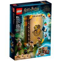 Lego Harry Potter - Momento Hogwarts™: Aula De Herbologia - 76384